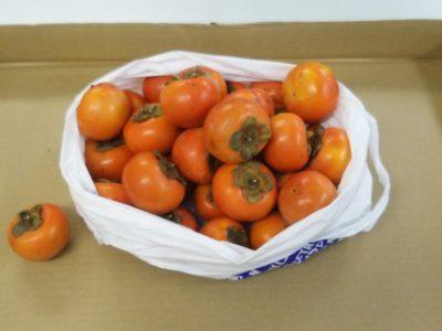 たくさんの柿